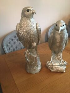 EAST OF INDIA. Two Very Large Birds When Bought They Where £79 Each 3 Yesrs Ago