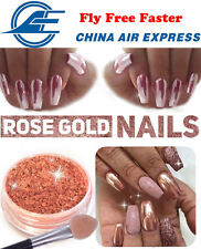 NEWEST! MIRROR POWDER CHROME EFFECT Pigment NAILS New Rose Gold Silver Nail Art