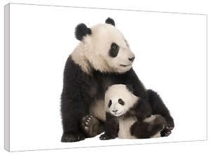 Cute Panda and Cub Canvas Wall Art Picture Print