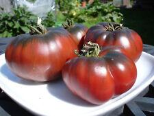 Tomato Black Krim  Extremely Tasty Russian Heirloom 25+ ORGANIC Seeds !