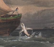 1839 Gravure originale Pêche du requin pêcheurs poissons voilier