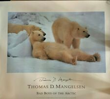 """'Thomas D Mangelsen """"Bad Boys of the Arctic"""" SIGNED"""