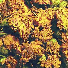 100g Fibrecrafts Natural Dye - Marigold Flowers - Marigold for Natural Dyeing