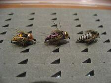 6 ninfas, sin muerte, cuerpo de Tungsteno #12  Pesca a mosca. FLY FISHING (28)