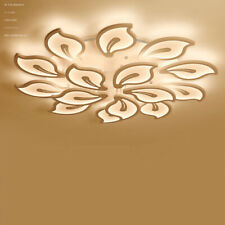 Ceiling Home Lights Mayflower Warm Cool Neutral Light LED Chandeliers Acrylic