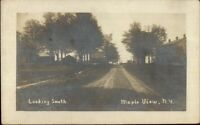 Maple View NY Looking South c1910 Real Photo Postcard