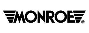 Frt OESpectrum Strut  Monroe/Expert Series  72899