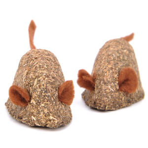Clean Mouth Catnip Toy Pets Cat Mice Edible Mint Smell Natural Cute Add Vitamins