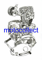 BSA A65 Engine - Cutaway Technical Drawing..A3 size..Free Postage Worldwide