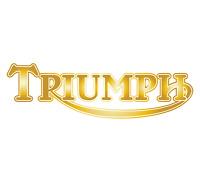 2 x GOLD - TRIUMPH - Motorbike Tank Decal Stickers