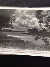 Postcard Unused Murray Series No 10 Bundaberg Alexandra Park M59