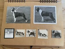 More details for very rare boston terrier kennel photograph scrapbook