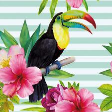 Wall Art  Square Decorative Art Canvas Prints Hibiscus Toucan (square)
