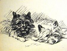 Lucy Dawson 1937 SO SWEET - BLACK & WHITE CAIRN TERRIERS Dog Art Print Matted