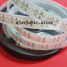 Double Row 5M 1200Leds 2835 Cool white LED Strip Light Waterproof IP67 DC12V