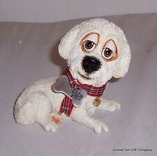 LITTLE PAWS From Arora - Candy Bichon Frise