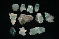 green apophyllite lot ( 11 Nos) Mineral SPECIMEN*INDIA*#1763