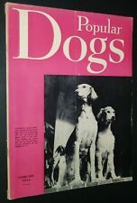 Popular Dogs Illustrated Magazine Saluki Cover + Champion Photos Feb. 1956