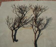 "4 FULL 36"" Manzanita Branches for centerpieces or wishing trees for wedding"