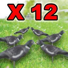 12 Pigeon Decoy Shells High Definition Decoying Shooting HD Painted Rocker Pegs