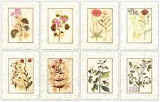 Manuscript Botanicals~Set of 8 Floral Tree Art Prints w/ Handwriting Borders
