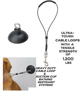 "Dog PET Grooming""HOLD EM""Bath RESTRAINT SUCTION CUP,HOOK & 19"" LOOP Noose SYSTEM"