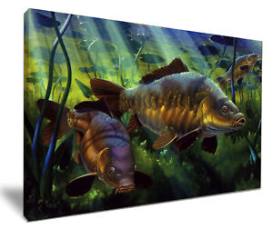 Underwater Carp HD Framed Canvas Wall Art Picture Print