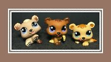 Authentic Littlest Pet Shop LPS Bear Petriplets Triplets Cubs #1554 1555 1556