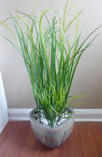 10 Long Grasses With Two  Bushes Artificial Plastic Plants Home Garden Landscape