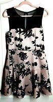 Trixxi Women's Juniors' Sleeveless Pink Dress Black Flocked Floral Print Size XL