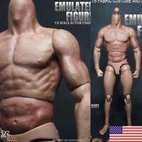 """1/6 Scale 12"""" Zc Toys Model Toy Nude Male Muscular Figure Body HT Headsculpt US"""