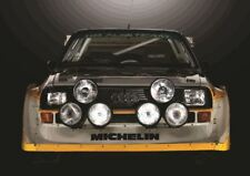 AUDI SPORT QUATTRO S1 RALLY CAR SMALL POSTER ART PRINT A3 SIZE GZ1910