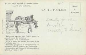 SOCIETY FOR PREVENTION OF CRUELTY TO ANIMALS PUB PC, HORSE & CART IMAGE c 1902
