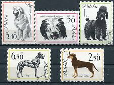LOT SERIE TIMBRE CHIEN  POLOGNE