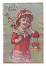 Alden Fruit Vinegar Large Victorian Trade Card - Young Girl with Cherries