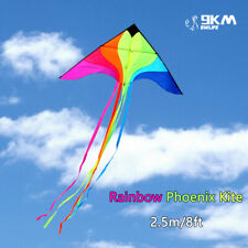 2.5m Huge Rainbow Phoenix Kite for Single Line Kite Outdoor Kite Flying Fun