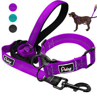 Reflective Dog Pet Collar with Bungee Lead Set for French Bulldog Beagle Lab S-L