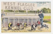 West Flagler Kennel Club,Miami,Florida,Starting Box,Dog Racing Track,c.1940-50s