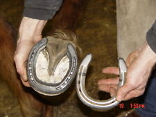 Horse Shoeing Horse Smithing Horses 30 Books CDROM Horseshoe Shoeing Foot