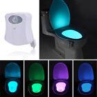 8 Color Body Sensing Automatic LED Motion Sensor Toilet Bowl Night Light Lamps !