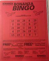 93 Wheeling Thunderbirds ECHL Hockey Game Program Promo BINGO Card West Virginia