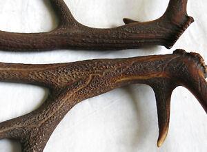 BOIS de CERF,paire bois de cerf,chasse,couteau, lustre,62 et 66 cm, black forest