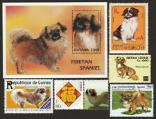 Tibetan Spaniel * Int'l Dog Postage Stamp Art Collection * Great Gift Idea *