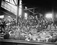 Boston Braves baseball fans at Shibe Park Philadelphia 1914 New 8x10 Photo
