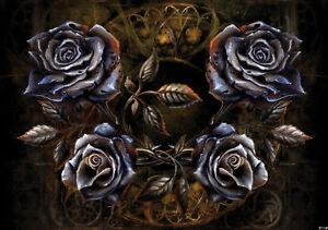 VLIES Fototapete-ALCHEMY GOTHIC-(2370)-Schädel Hexen Drachen Dioscuri Lilithia