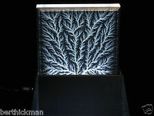 "4"" x 4"" x 3/4"" Beveled Captured Lightning Lichtenberg Figure & Black Metal Base"
