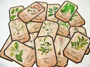 Spice Herb Labels 30 Assorted Herb Spice Labels! Elegant Spice Herb Labels!