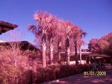 Kodak Z915 10MP 10X Zoom IR/UV Infrared Full Spectrum Ghost Hunting Camera