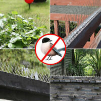 5m Pack Fence Wall Spikes Garden Intruder Bird Cat Repellent Burglar Anti TP