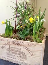 1 x véritable grande en bois coffret vin-jardin planters/décoratif fenêtre boîtes